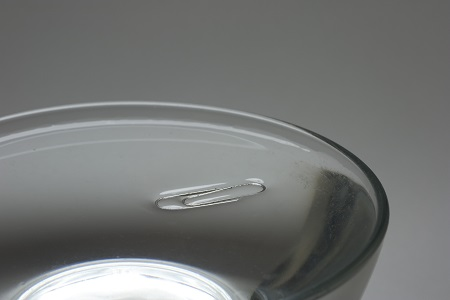 Surface Tension - Capillary Action - Liquid in a vertical tube